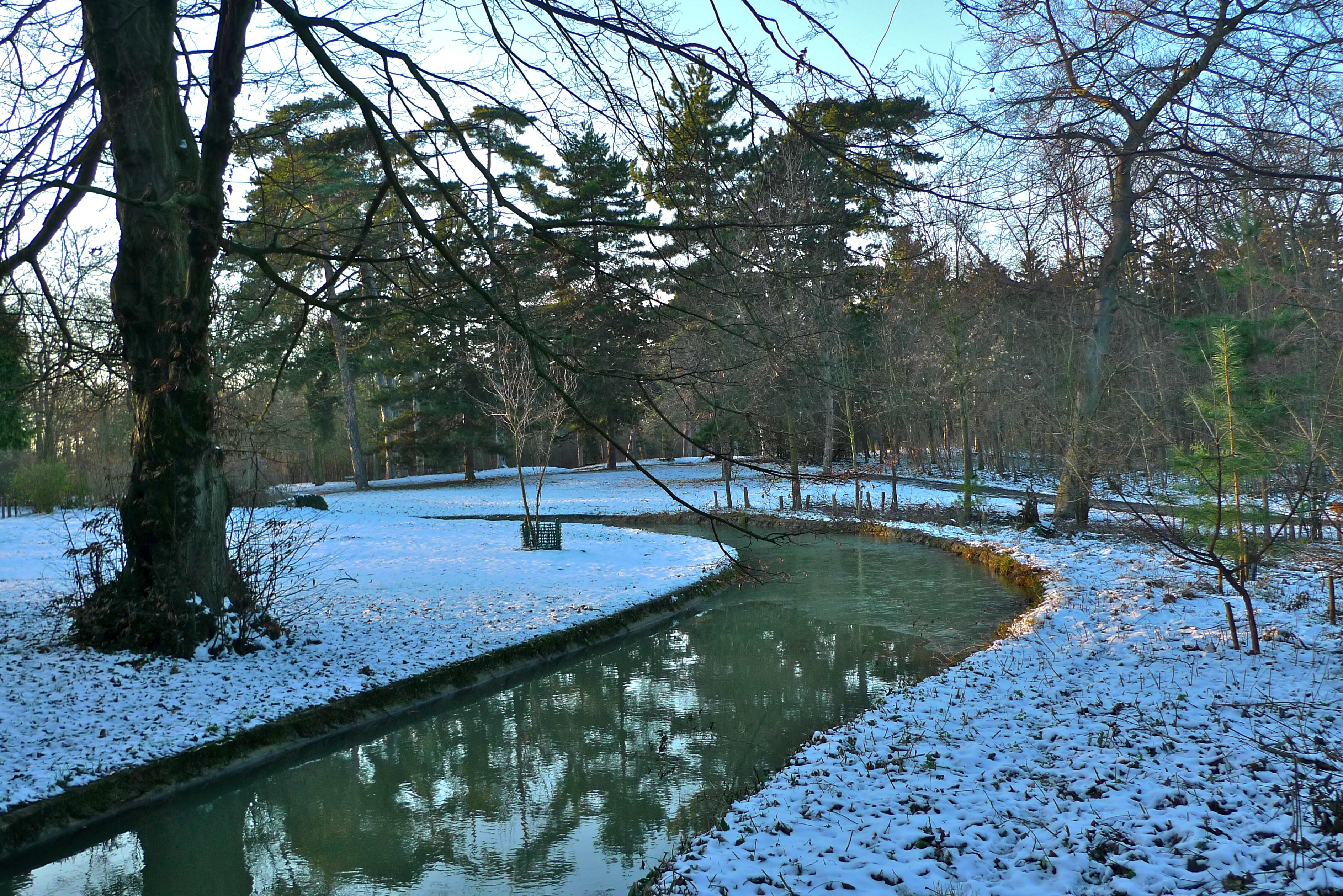 Image Bois De Boulogne : Christmas Day in the Bois de Boulogne Soundlandscapes' Blog