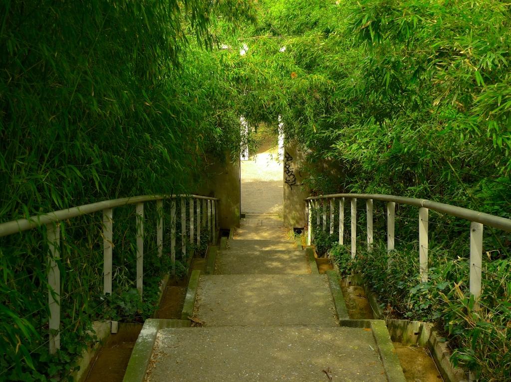Le Cylindre Sonore, Bamboo Garden, Parc de la Villette