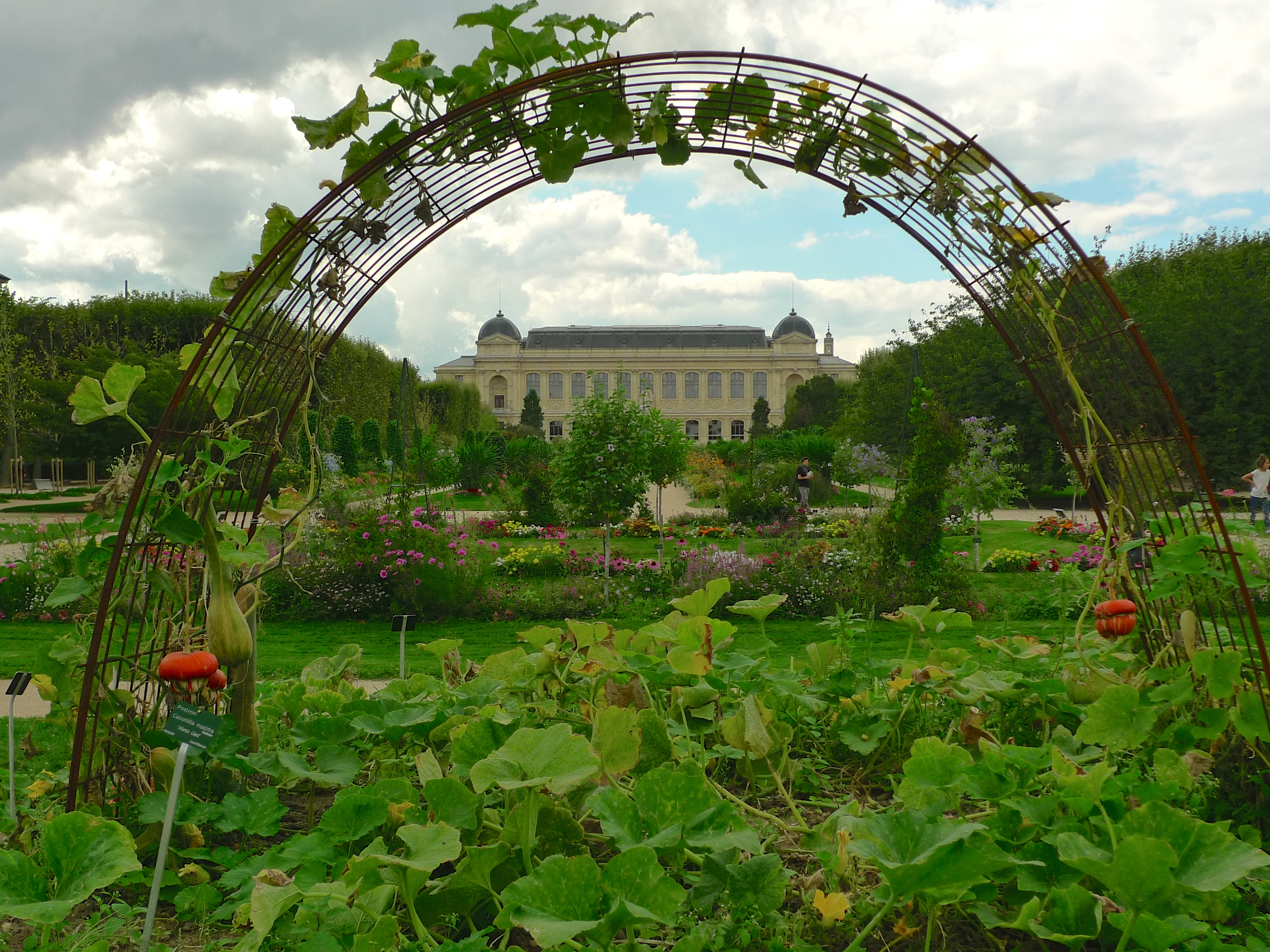 Jardin des plantes soundlandscapes 39 blog for Jardin plantes paris