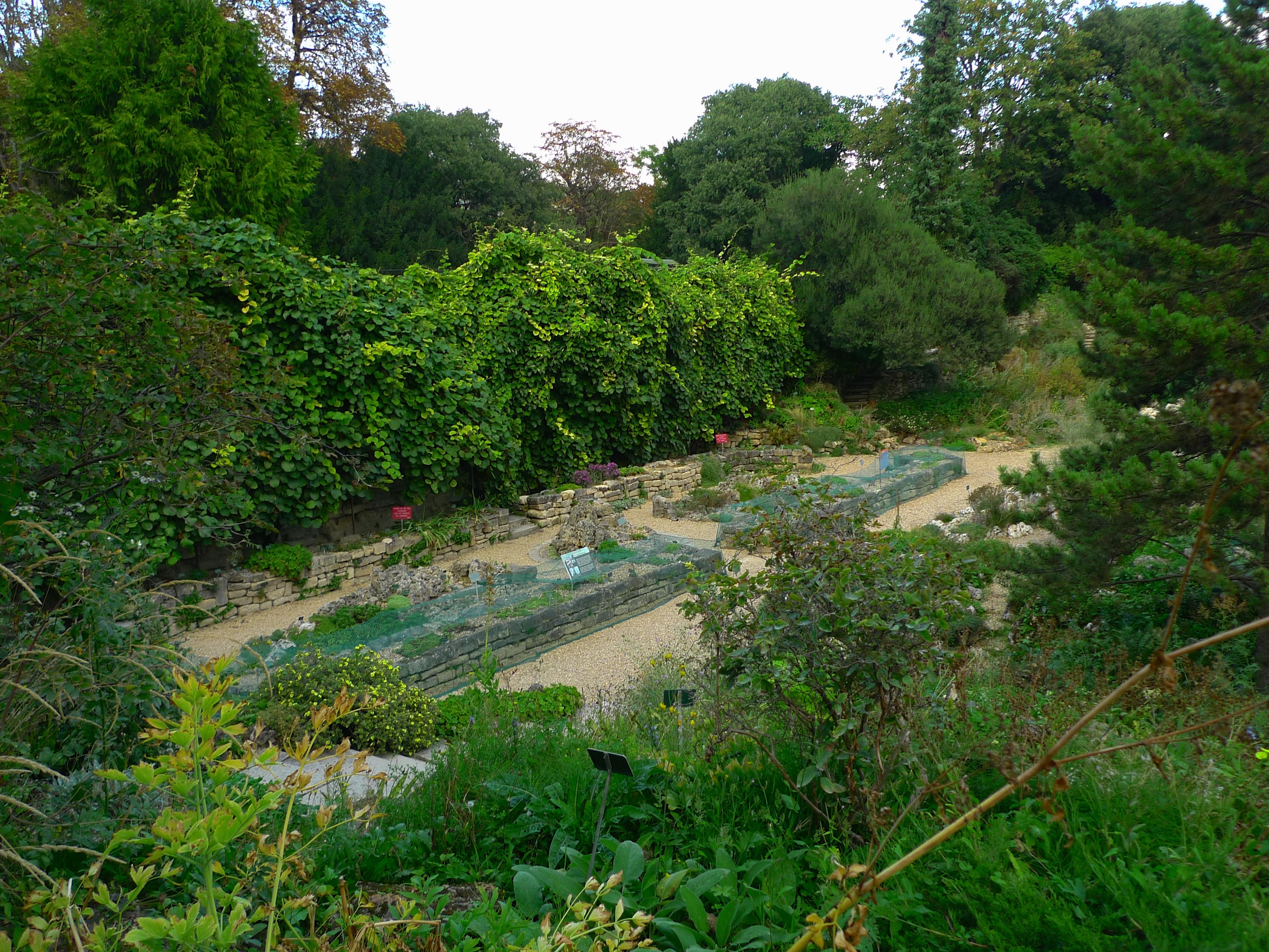 Le Jardin des Plantes and its Sounds